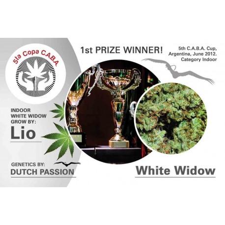 White Widow fem
