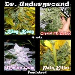 Killer Mix fem - Dr. Underground