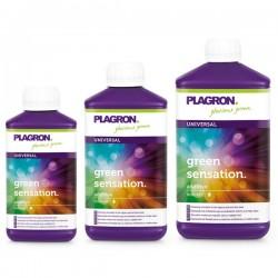 Green Sensation - Plagron