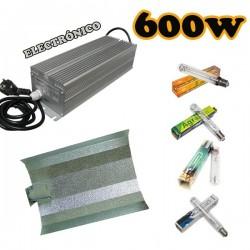 Kit Agrolite Electronico 600W