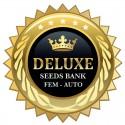 Luxury fem - Deluxe Seeds
