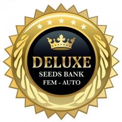 Suite Skunk fem - Deluxe Seeds