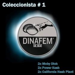 Dinafem Pack 1