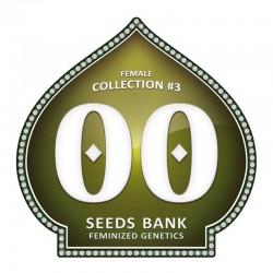 Femenized Colección 3 - 00 Seeds