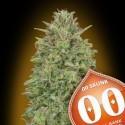 00 Skunk - 00 Seeds