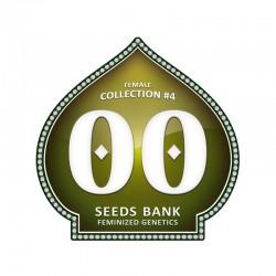 Feminized Colección 4 - 00 Seeds