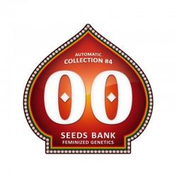 Automatik Colección 4 - 00 Seeds