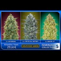 Feminized Collection 5 - Advanced Seeds