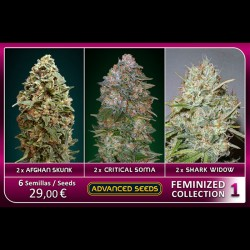 Femenized Collection 1 - Advanced Seeds