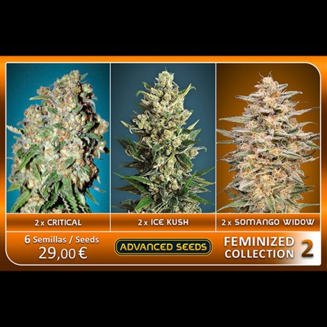 Femenized Collection 2 - Advanced Seeds