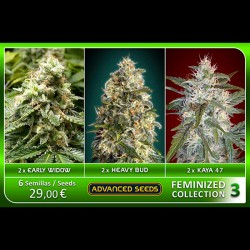 Femenized Collection 3 - Advanced Seeds