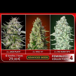 Femenized Collection 4 - Advanced Seeds