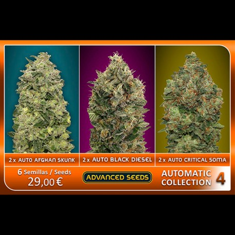 Automatic Collection 4 - Advanced Seeds
