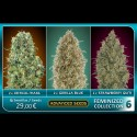 Feminized Collection 6 - Advanced Seeds