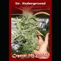 Crystal METH fem - Dr. Underground
