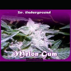 Melon Gum fem - Dr. Underground