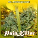 PainKiller fem - Dr. Underground