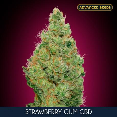 Strawberry Gum CBD fem - Advanced Seeds