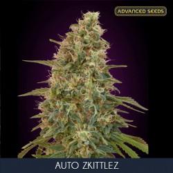 Zkittlez auto - Advanced Seeds