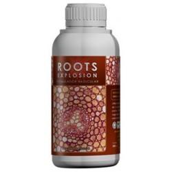 Roots Explosion-estimulador radicular Ecol