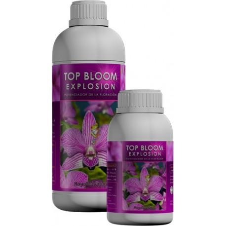 Top Bloom Explosion-potenciador floraci